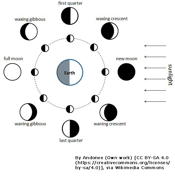 diagram showing the moon's phases